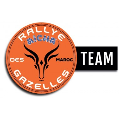 Lot de 10 stickers Logo Team