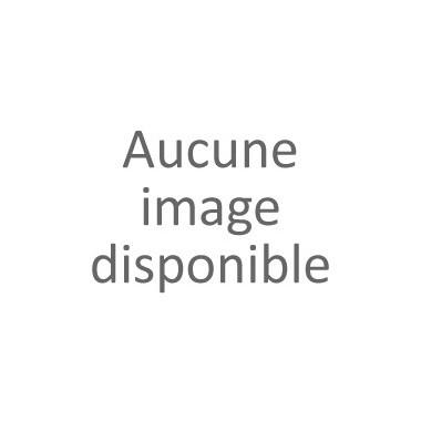 NOUVELLE COLLECTION : Lot de 50 Stylos Gazelle Toujours